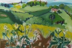 Oilseed Rape near Wharram Percy.