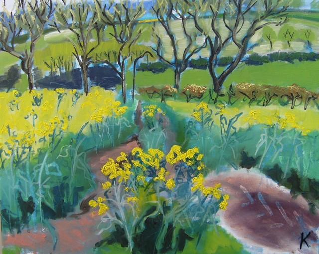 Fields of Rape Flowers