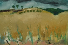 Approaching rain over the Wheat