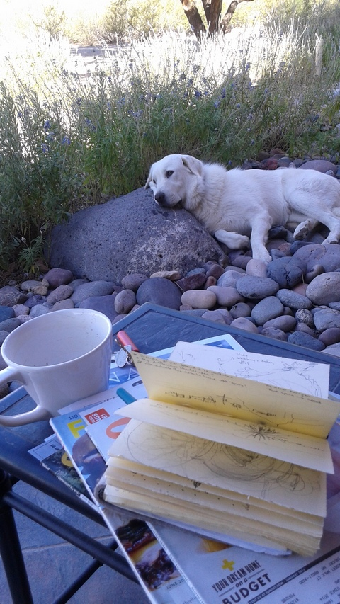 Sheba keeping an eye on my work, Las Cruces